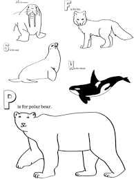 fox racing coloring pages arctic animals printable coloring pages u2013 miniature masterminds