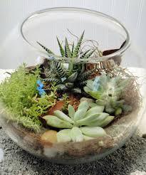 succulent terrarium ah sam flowers san meteo san fransico