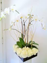 orchid plant orchid plant design in san gabriel ca creative floral designs