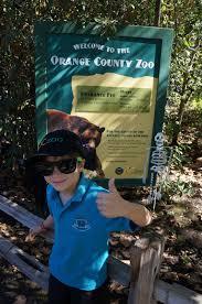 orange county mom blog sneak peek into the halloween oc zoo