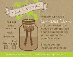 25 unique self watering ideas on pinterest self watering plants