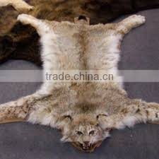 Fake Lion Skin Rug With Head Faux Lion Rug Rugs Ideas