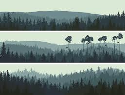 Murals Custom Hand Painted Wall Murals By Art Effects Into The Woodlands Wallpaper Mural Forest Wallpaper Beautiful