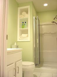 catchy lime green accents wall paint of basement bathroom themed