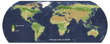 Types Of World Maps by New Map Reveals U0027astronomical U0027 Scale Of Human Impact On Forests