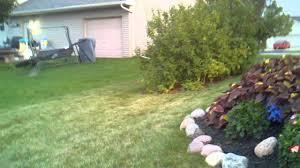 backyard bmx appleton wi youtube