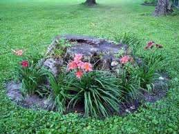 pretty way to make use and hide a tree stump landscaping plants