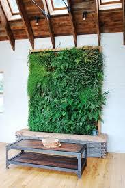 Indoor Hanging Garden Ideas Designs By Style 8 Vertical Garden Indoor Garden Ideas Indoor