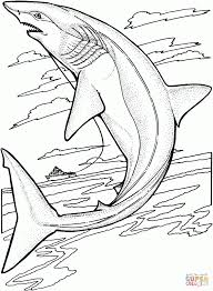 coloring pages lemon shark