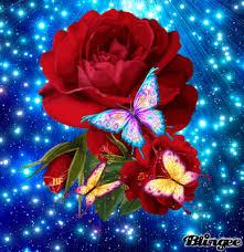 Roses And Butterflies - roses and butterflies roses n butterflies