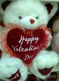 teddy valentines day valentines day teddy images s day pictures