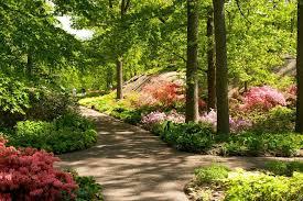 Botanic Garden New York Azalea Garden The New York Botanical Garden Office Photo