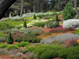 hillside planting landscape contemporary with seaside