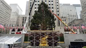 rockefeller u0027s 2015 christmas tree has the sweetest family history