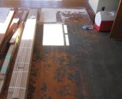 Hardwood Floor Buffing Buffing Hardwood Floors Houses Flooring Picture Ideas Blogule