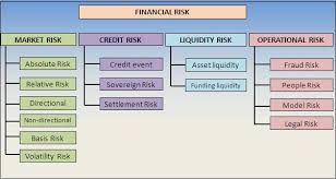 commercial risk model is financial risks and its types