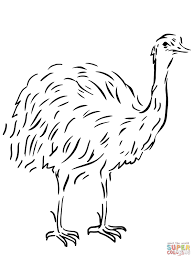 tweety bird coloring pages emu flightless bird coloring page free printable coloring pages