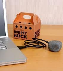 usb pet rock gadgets under 50