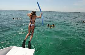 Florida snorkeling images Florida keys snorkeling aboard the quot happy cat quot robbie 39 s of jpg