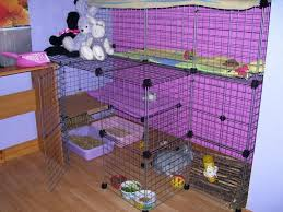 Make Rabbit Hutch 26 Best House Rabbits Images On Pinterest House Rabbit Rabbit