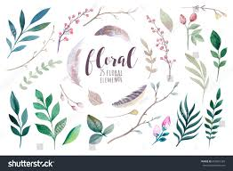 watercolour boho flower set floral decoration stock illustration