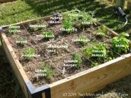 Herb Garden Layout Popular Herb Garden Design Ideas For Small Spaces