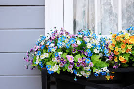 Flower Boxes That Thrive In by Annual Flowers How To Make Them Thrive Reader U0027s Digest