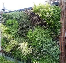green wall smithsonian gardens