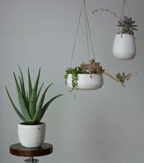 Hanging Planters Indoor by Top 25 Best Hanging Wall Planters Ideas On Pinterest Cheap