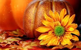 thanksgiving themed wallpaper fall scene wallpaper with pumpkins wallpapersafari