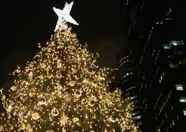 christmas trees 7 christmas trees to see in new york city the rockettes