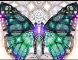 the symbolic meaning of a butterfly s transformation elephant