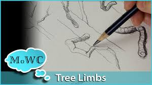how to draw u0026 paint better tree branches youtube