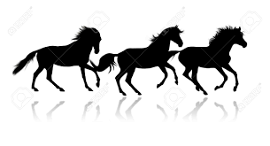 mustang horse silhouette silhouettes of three running horses over white stock photo