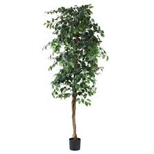 artificial trees artificial ficus tree green 7ft indoor artificial tree by olore