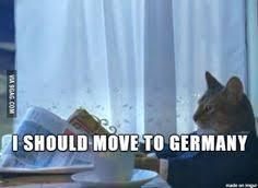 I Should Buy A Boat Meme Generator - sophisticated cat meme generator sophisticated cat i should nope