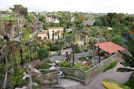 San Diego Botanical Garden Foundation San Diego Botanic Garden Ca Cruisebe