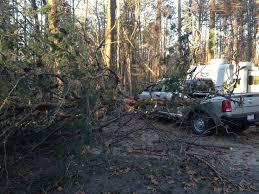 Dodge Truck Cummins Problems - a tree fell on my ram dodge cummins diesel forum