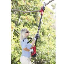 cordless pole trimmer innovations