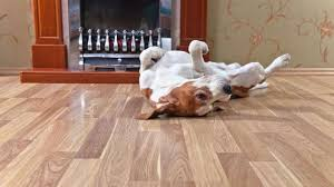 what is the best flooring for dogs and other rambunctious house