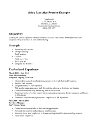Free Senior Operations Executive Resume Sales Executive Cv Example Beautiful Resume Format For All Sample