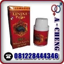 alamat toko lintah papua asli di gresik 081228444346