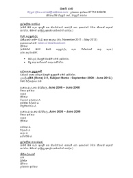 Fill In The Blank Resume Pdf 1 Sinhala Cv Template ස න හල ජ ව දත ත අක ත ය