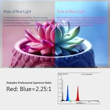 red and blue led grow lights roleadro led grow light bulb 45w plant growing lights l panel