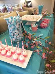 blue baby shower pink elephant baby shower aspen