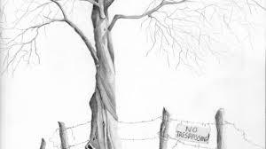 pencil sketches trees drawing pencil