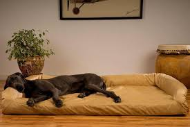 personalized dog beds for large dogs best 25 ideas on pinterest