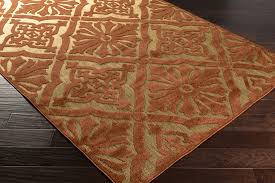 Rust Area Rug Rust Area Rug Home Design Ideas And Pictures