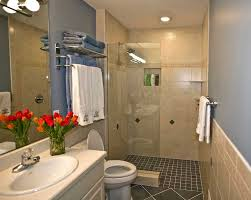 walk in shower ideas for small bathrooms unique walk in shower ideas for small bathrooms for home design