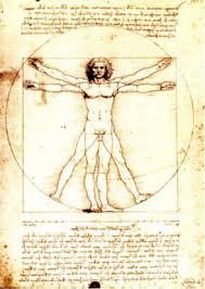 Leonardo Da Vinci Human Anatomy Drawings Leonardo Da Vinci Anatomical Drawings Vitruvian Man